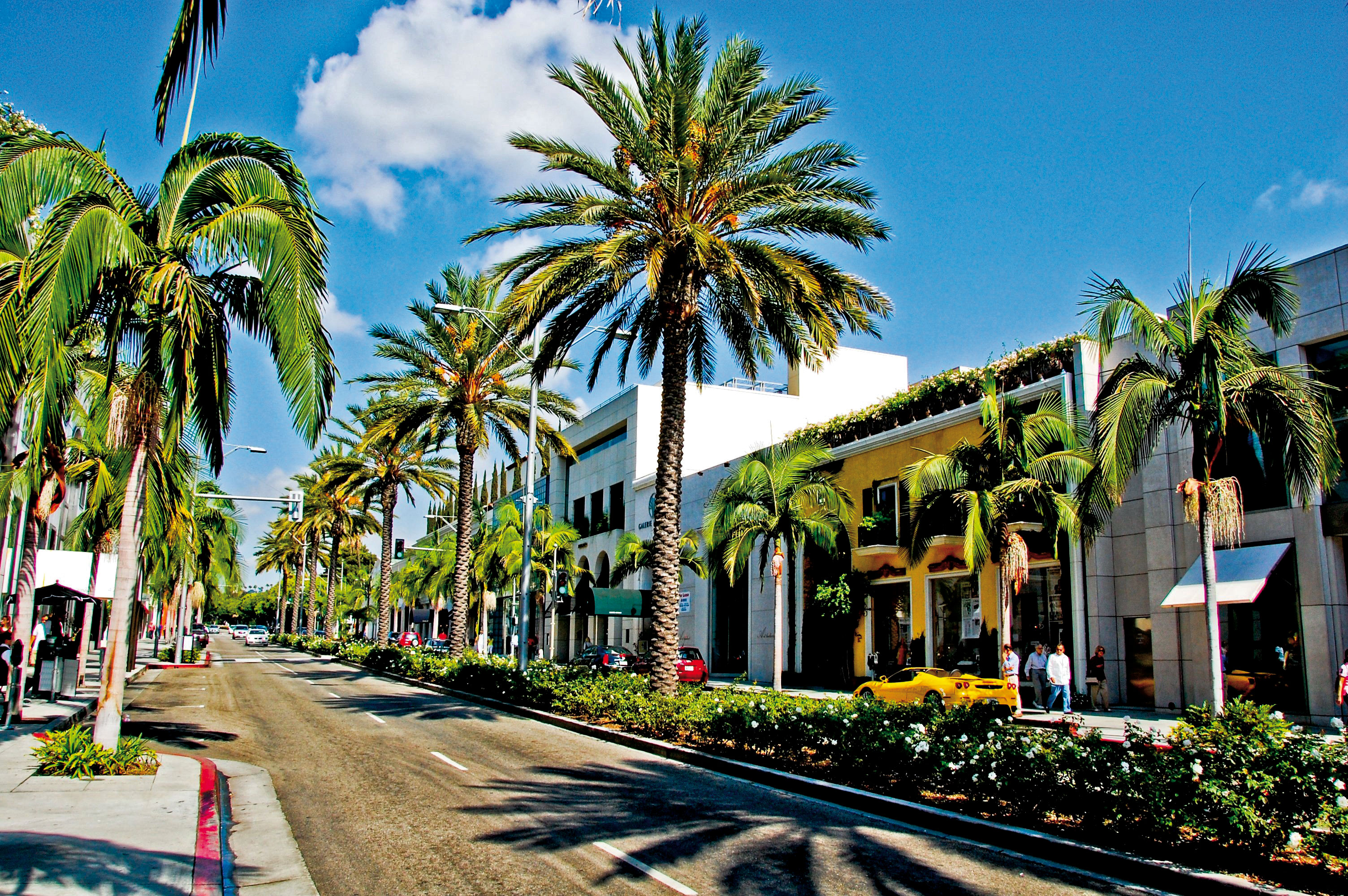 rodeo-drive1
